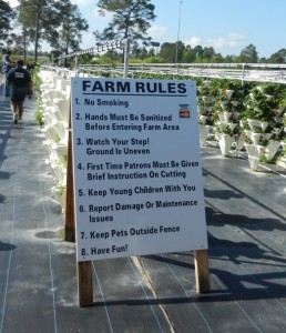 posted rules field instructions how to pick fruit how to garden Strawberry farm farm rules garden safety